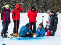 How to visualize the liquid water flow in the snowpack